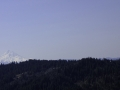 Mt Hood1-800