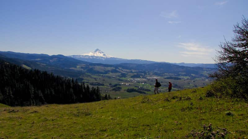 Hood River Mountain - Adventures with Dotty