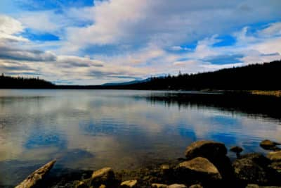 Adventures with Dotty Elk Lake