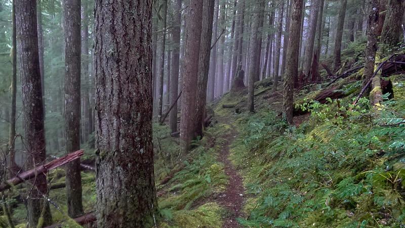 Horseshoe Ridge - Adventures with Dotty