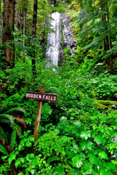 Hidden Falls - Adventures with Dotty