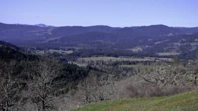 Weldon Wagon Trail - Adventures with Dotty