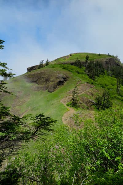 Saddle Mountain - Adventures with Dotty