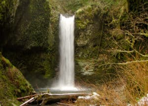 Wahkeena Falls Trail 420 - Adventures with Dotty