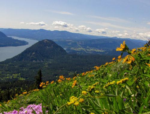 Augspurger Mountain